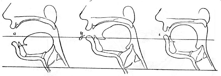 Схема положения языка и губ